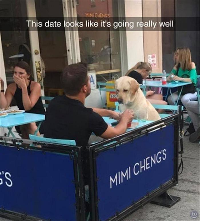 daily-morning-laugh-interest-funny-picdump-of-the-day-108